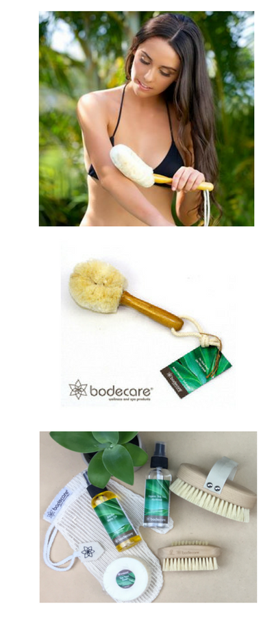 Bodecare – Non Toxic Body Brushes, FSC certified, Eco Friendly Springfield Lakes